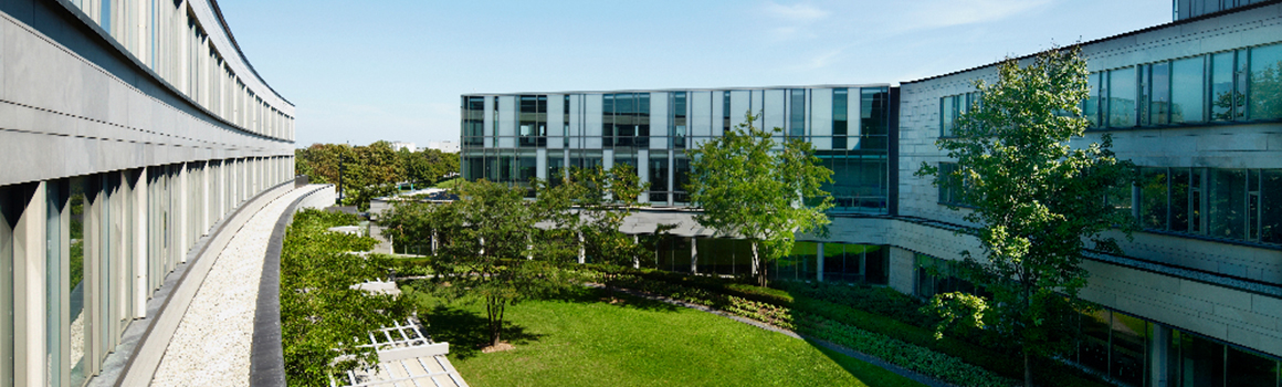Schulich School of Business - Courtyard