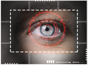 retina biometric scan