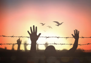 sunset with silhouette of people's hands raised in air with two rows of barbed wire and birds flying in distance