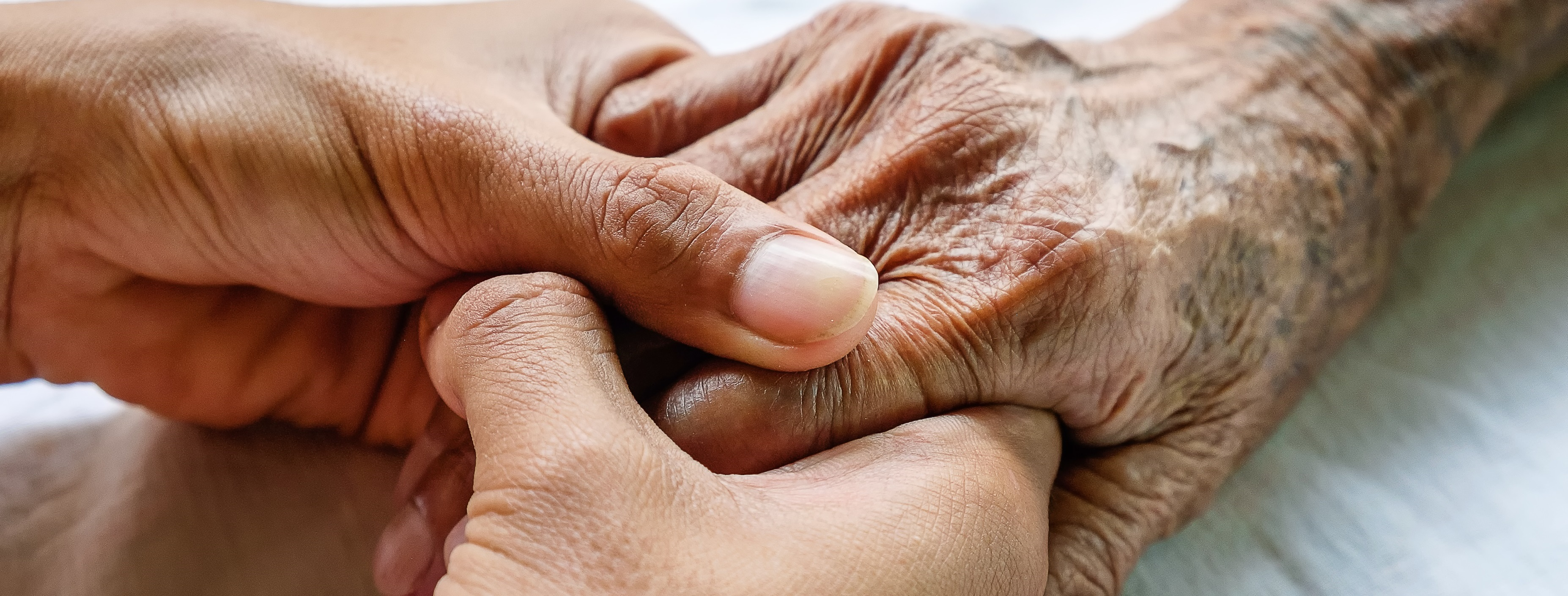 Study finds immigrants more likely to have inadequate palliative care